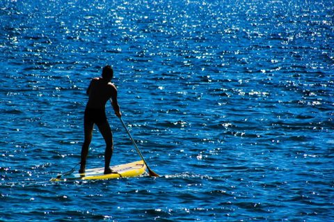 person on stand up paddleboard
