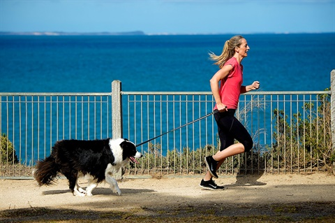 Where to walk your dogs - Surf Coast Shire