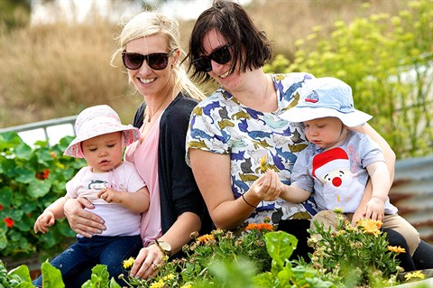 Women and babies in veggie patch