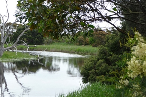 Parks and reserves listing - Surf Coast Shire