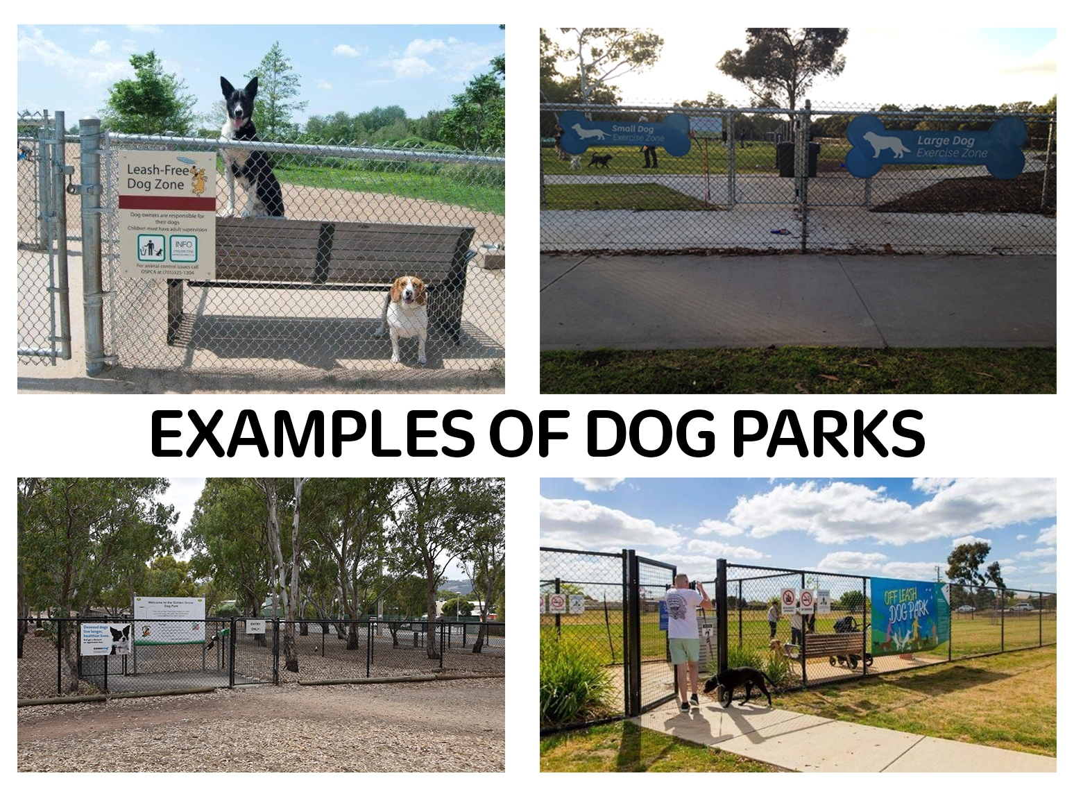 Dog park examples.jpg